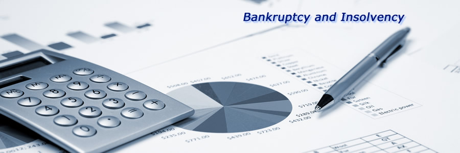 Bankruptcy / Insolvency