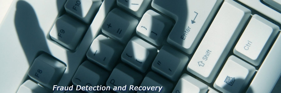 Fraud Detection & Recovery